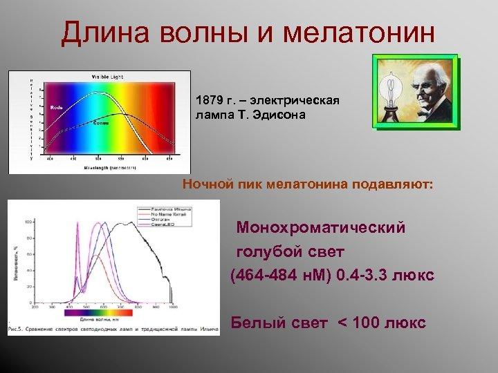 Длина волны и мелатонин 1879 г. – электрическая лампа Т. Эдисона Ночной пик мелатонина