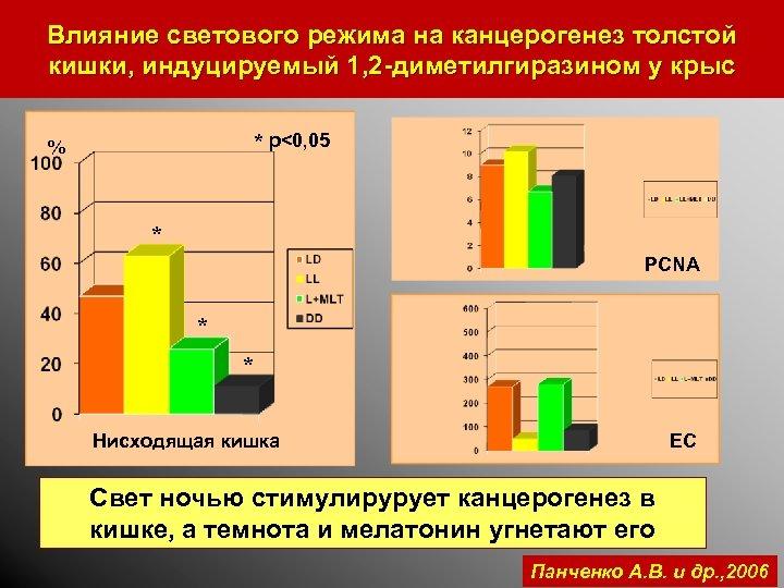 Влияние светового режима на канцерогенез толстой кишки, индуцируемый 1, 2 -диметилгиразином у крыс *