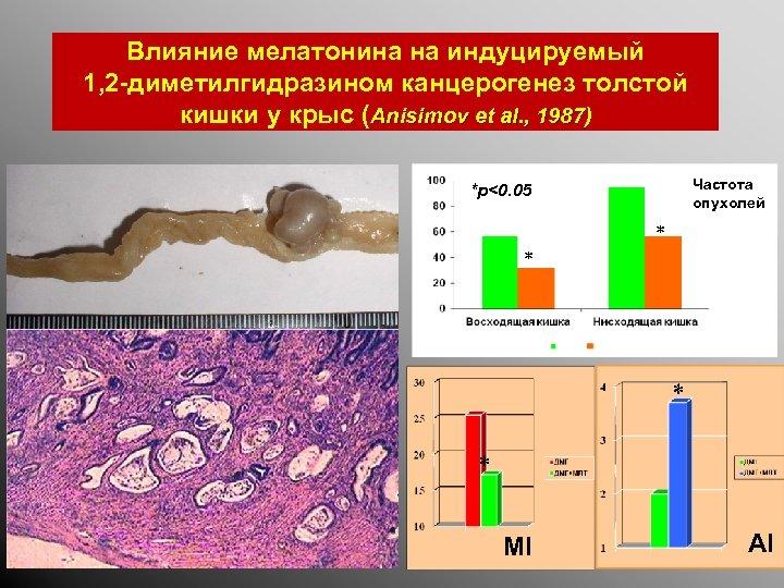 Влияние мелатонина на индуцируемый 1, 2 -диметилгидразином канцерогенез толстой кишки у крыс (Anisimov et