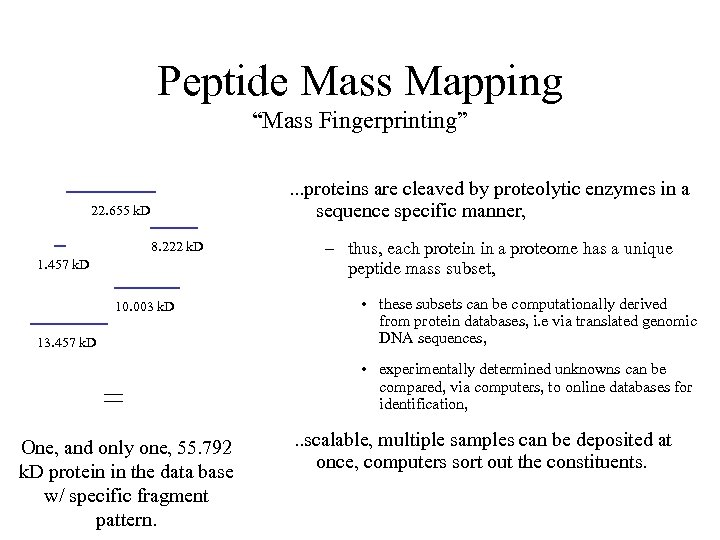 """Peptide Mass Mapping """"Mass Fingerprinting"""". . . proteins are cleaved by proteolytic enzymes in"""