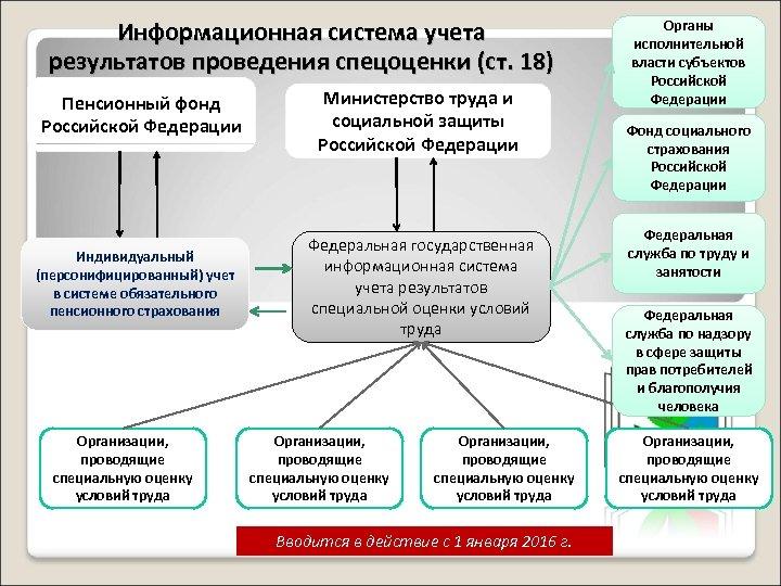 Информационная система учета результатов проведения спецоценки (ст. 18) Пенсионный фонд Российской Федерации Индивидуальный (персонифицированный)