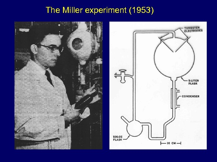 The Miller experiment (1953)