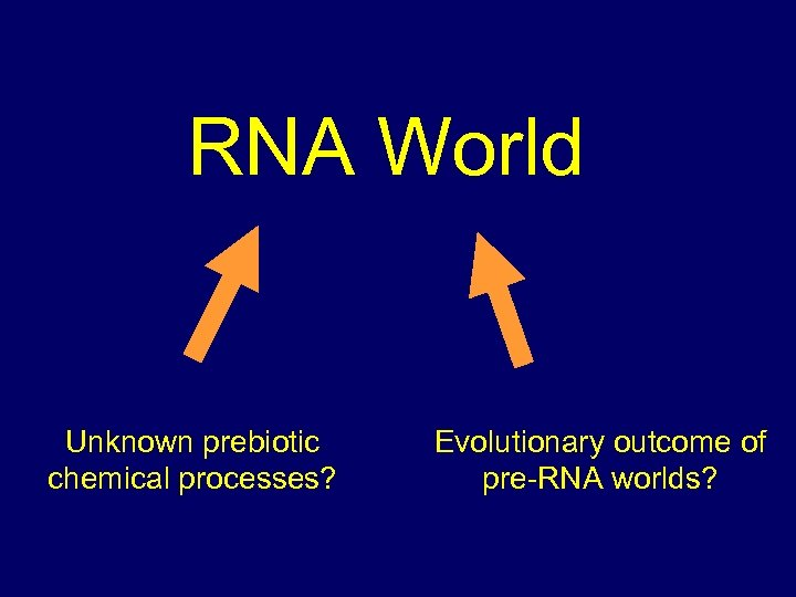 RNA World Unknown prebiotic chemical processes? Evolutionary outcome of pre-RNA worlds?