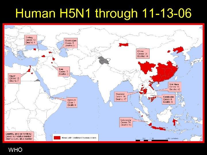 Human H 5 N 1 through 11 -13 -06 WHO