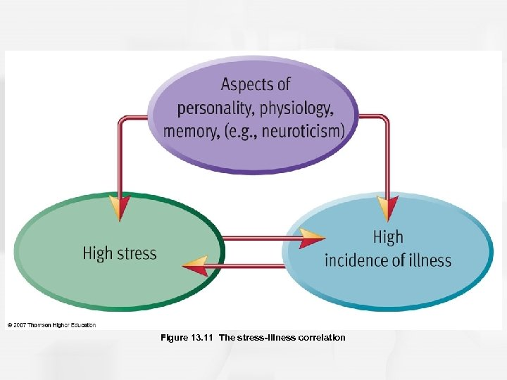 Figure 13. 11 The stress-illness correlation