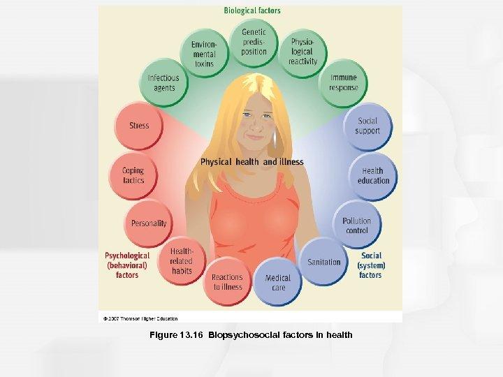 Figure 13. 16 Biopsychosocial factors in health