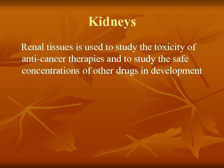 Kidneys Renal tissues is used to study the toxicity of anti-cancer therapies and to