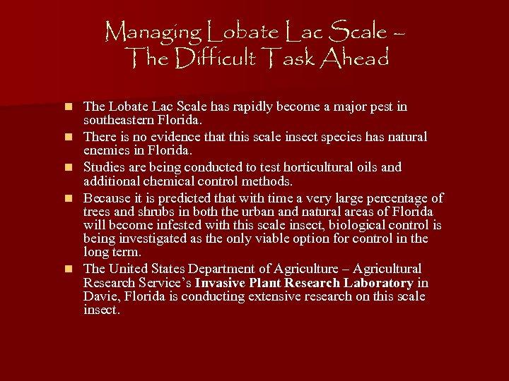 Managing Lobate Lac Scale – The Difficult Task Ahead n n n The Lobate
