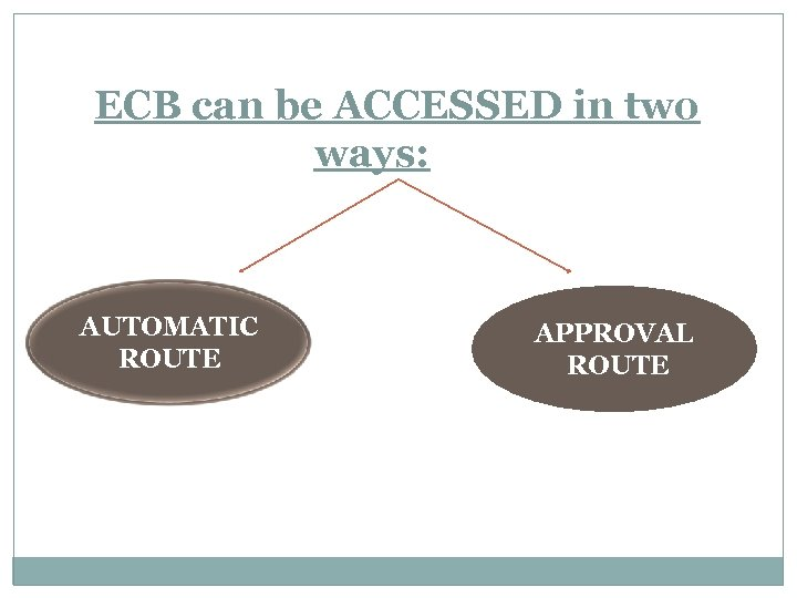 ECB can be ACCESSED in two ways: AUTOMATIC ROUTE APPROVAL ROUTE