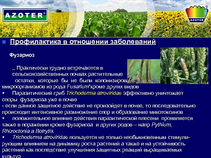 n Профилактика в отношении заболеваний Фузариоз , , Практически трудно встречаются в сельскохозяйственных почвах