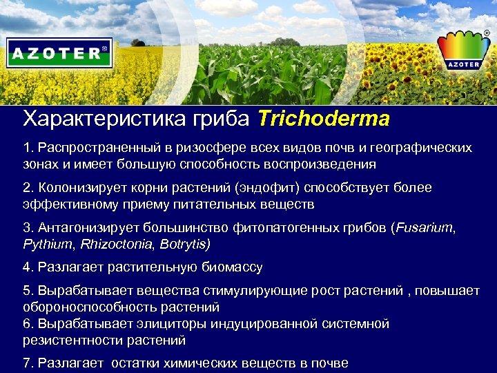 Характеристика гриба Trichoderma 1. Распространенный в ризосфере всех видов почв и географических зонах и