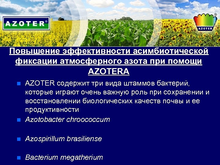 Повышение эффективности асимбиотической фиксации атмосферного азота при помощи AZOTERA n AZOTER содержит три вида
