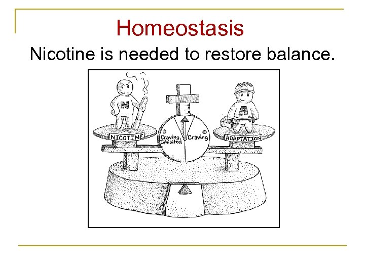 Homeostasis Nicotine is needed to restore balance.
