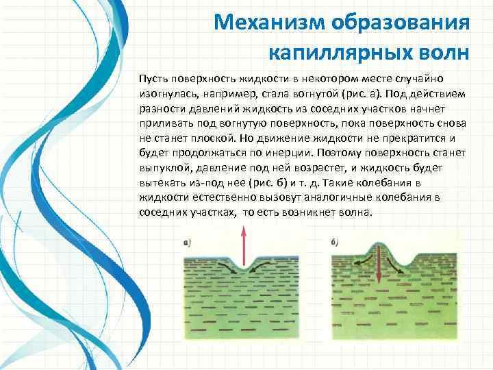 Механизм образования капиллярных волн Пусть поверхность жидкости в некотором месте случайно изогнулась, например, стала