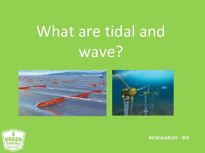 What are tidal and wave? RENEWABLES - 300