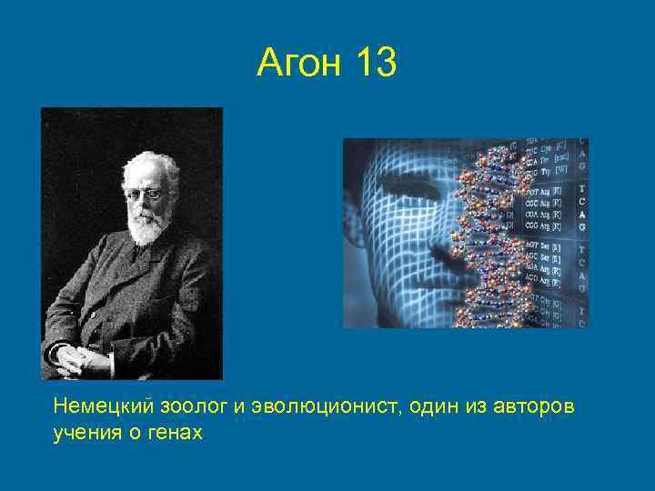 Агон 13 Немецкий зоолог и эволюционист, один из авторов учения о генах.