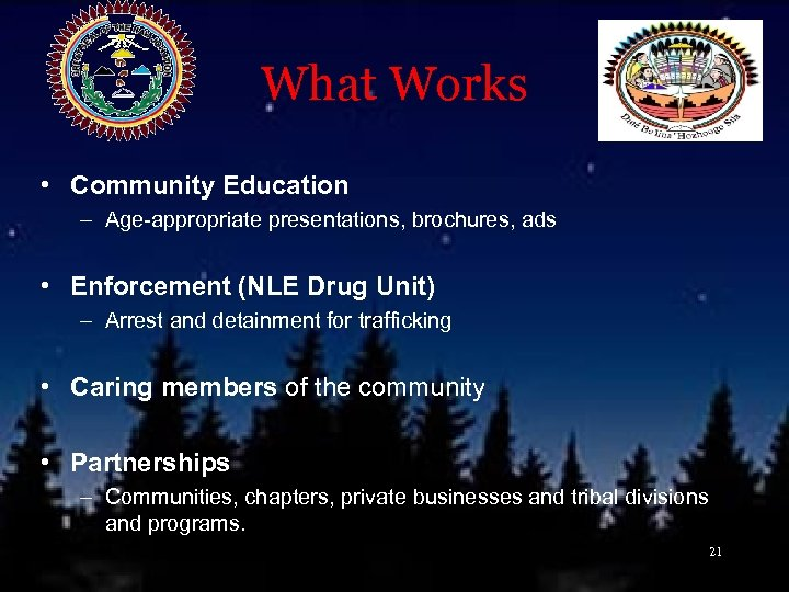 What Works • Community Education – Age-appropriate presentations, brochures, ads • Enforcement (NLE Drug
