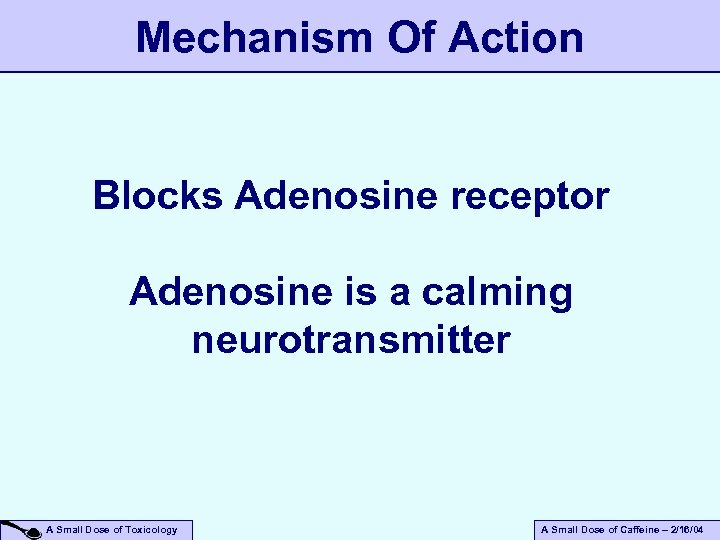 Mechanism Of Action Blocks Adenosine receptor Adenosine is a calming neurotransmitter A Small Dose