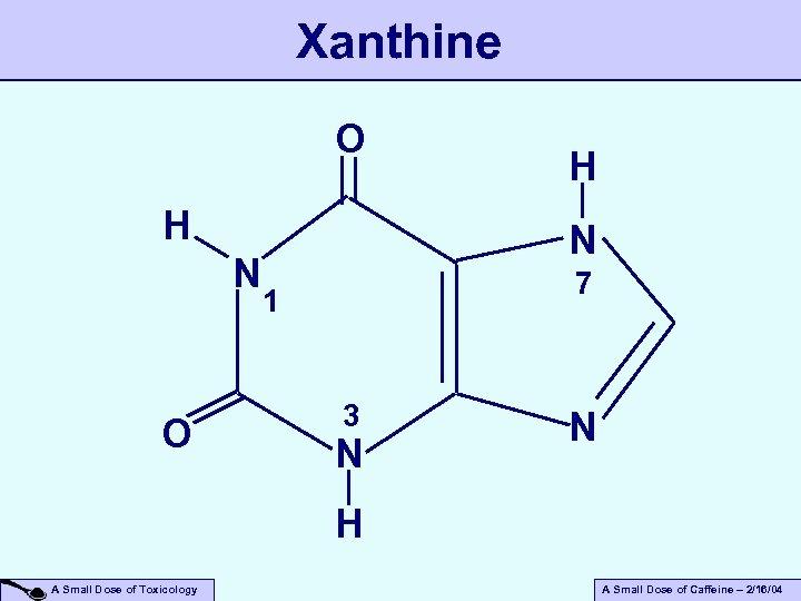Xanthine O H N 7 1 3 N N H A Small Dose of