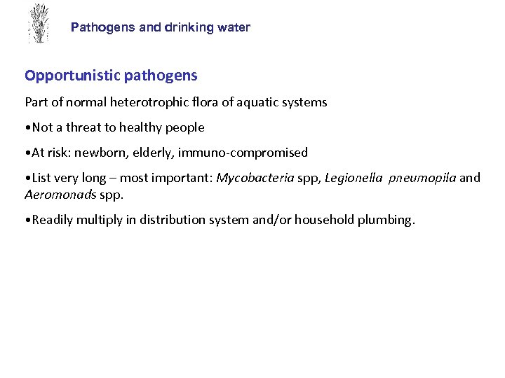 Pathogens and drinking water Opportunistic pathogens Part of normal heterotrophic flora of aquatic systems
