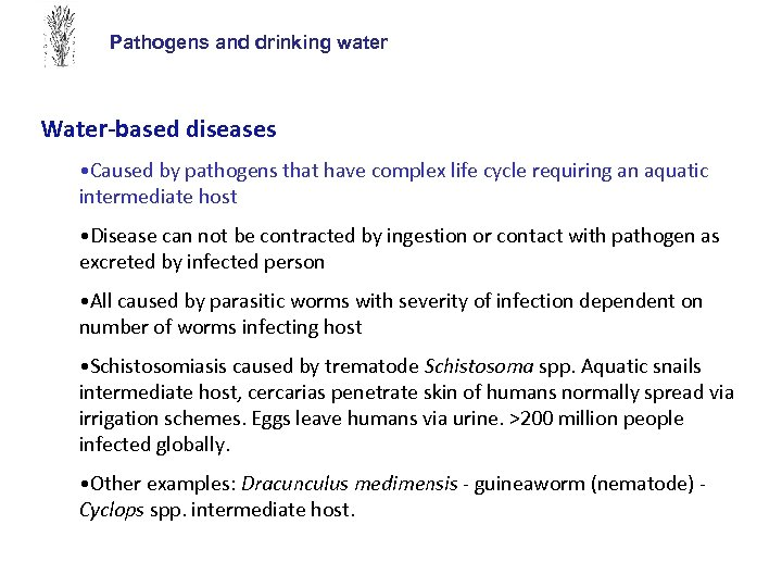 Pathogens and drinking water Water-based diseases • Caused by pathogens that have complex life