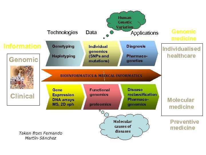 Human Genetic Variation Technologies Information Genomic Genotyping Haplotyping Data Individual genomics (SNPs and mutations)