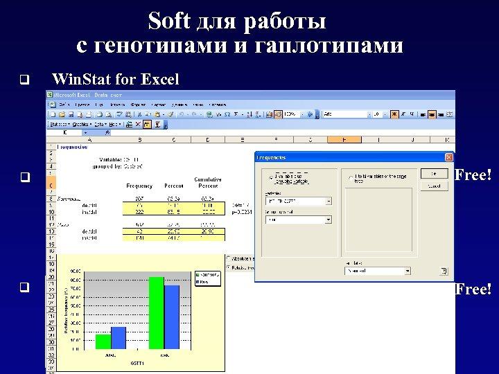 Soft для работы с генотипами и гаплотипами q Win. Stat for Excel Free! q