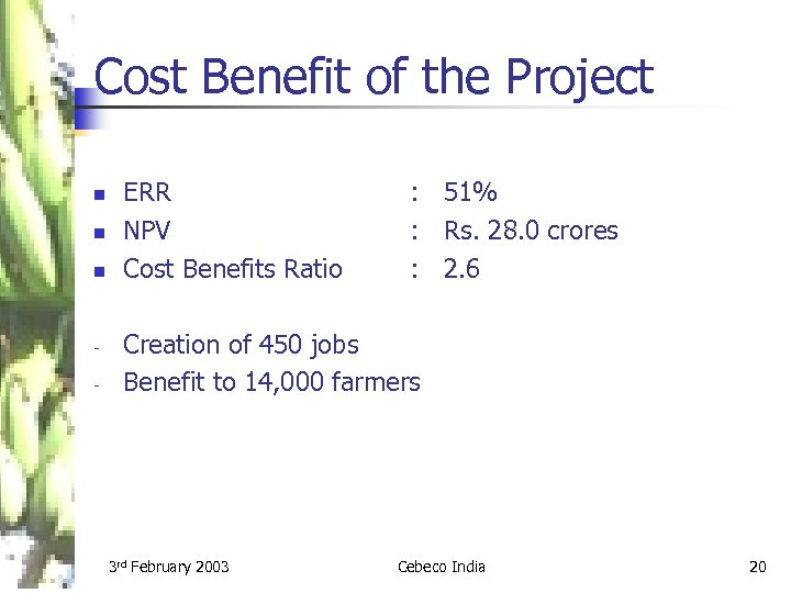 Cost Benefit of the Project n n n - ERR NPV Cost Benefits Ratio