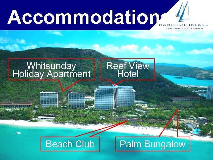 Accommodations Whitsunday Holiday Apartment Beach Club Reef View Hotel Palm Bungalow