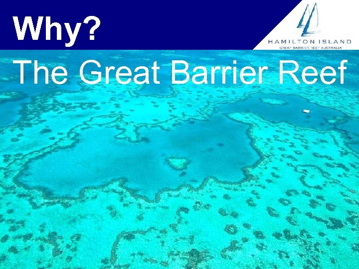 Why? The Great Barrier Reef