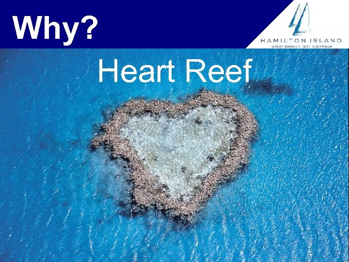 Why? Heart Reef
