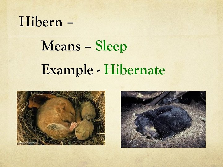 Hibern – Means – Sleep Example - Hibernate