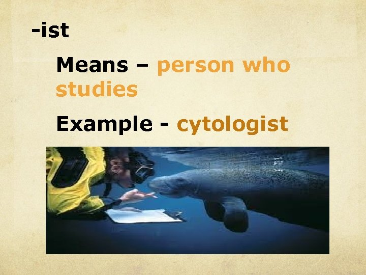 -ist Means – person who studies Example - cytologist