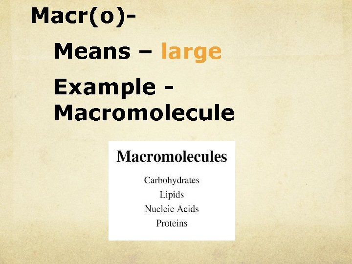 Macr(o)Means – large Example Macromolecule