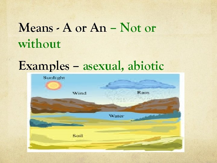 Means - A or An – Not or without Examples – asexual, abiotic