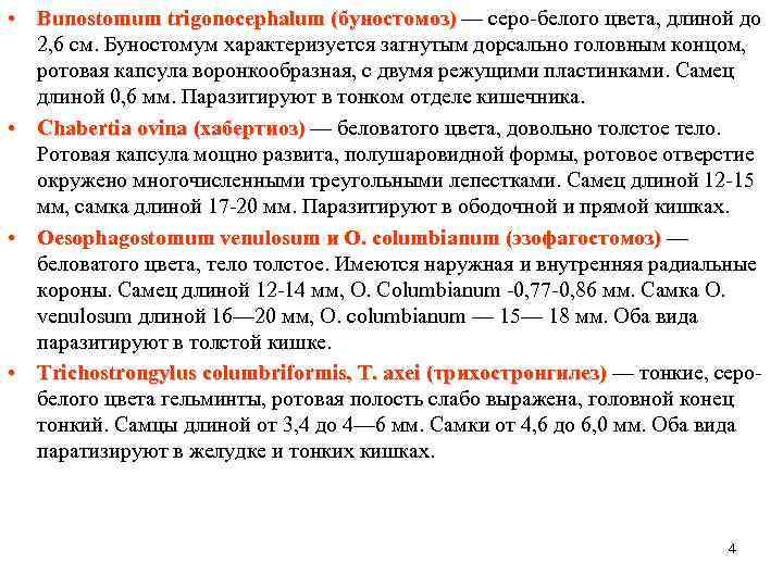 • Bunostomum trigonocephalum (буностомоз) — серо-белого цвета, длиной до 2, 6 см. Буностомум