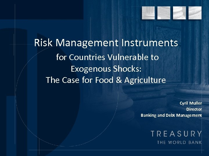 Risk Management Instruments for Countries Vulnerable to Exogenous Shocks: The Case for Food &