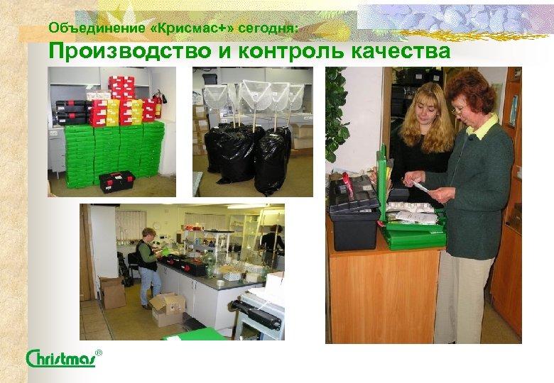Объединение «Крисмас+» сегодня: Производство и контроль качества