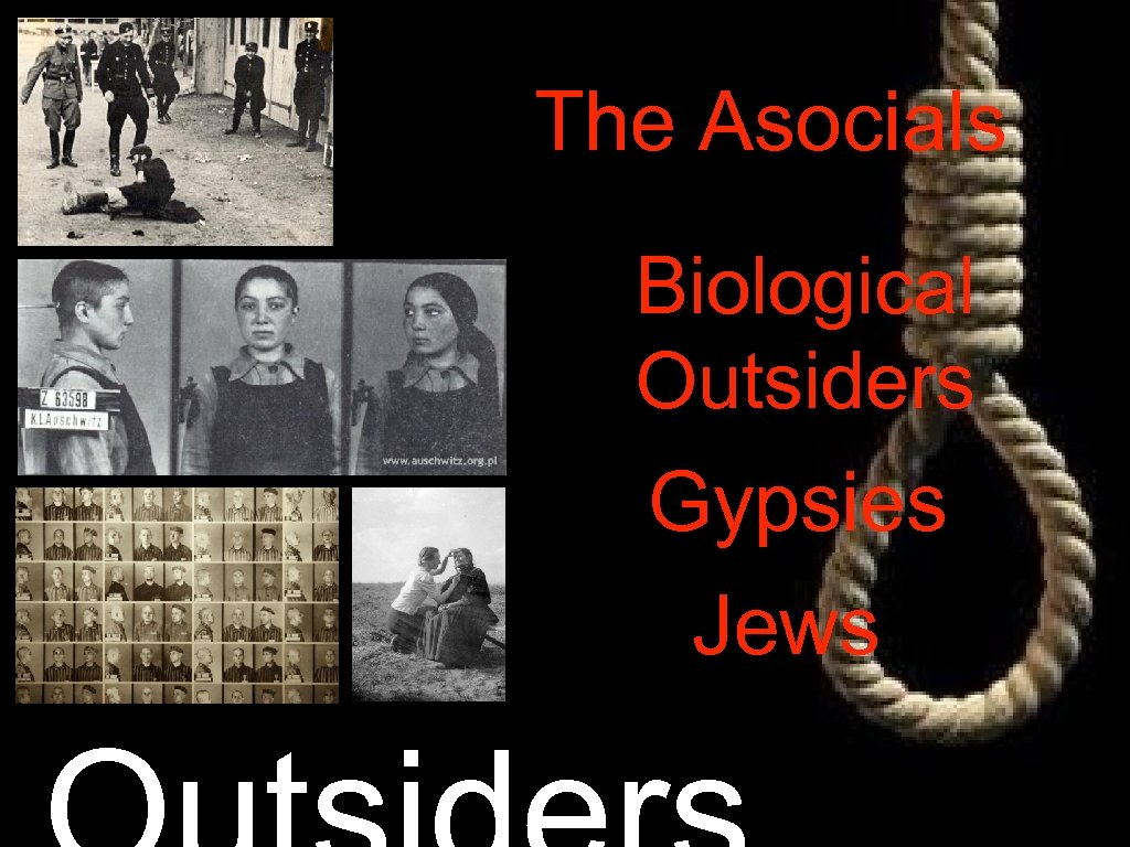 The Asocials Biological Outsiders Gypsies Jews