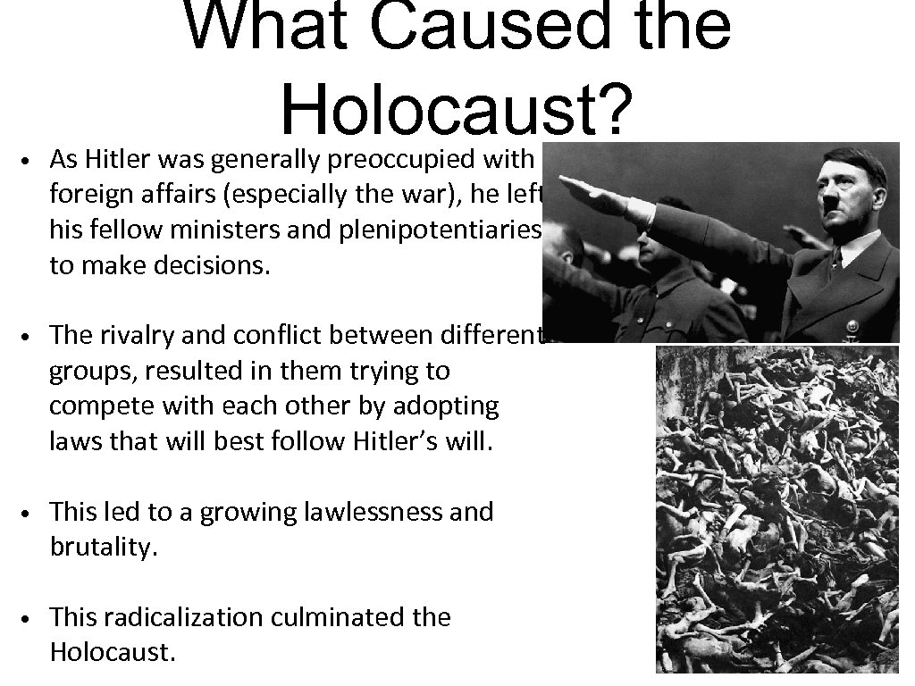 • What Caused the Holocaust? As Hitler was generally preoccupied with foreign affairs