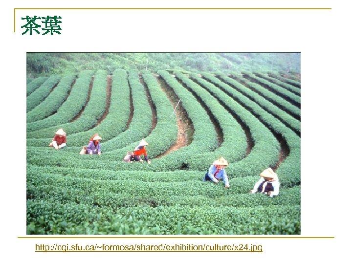 茶葉 http: //cgi. sfu. ca/~formosa/shared/exhibition/culture/x 24. jpg