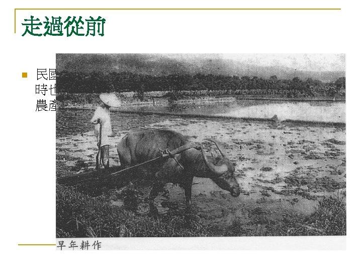 走過從前 n 民國四十年代,大戰剛過,民生凋蔽,其 時也沒有甚麼 業,算得上 業者也僅是 農產的初級加 而已。