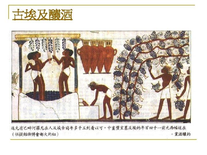 古埃及釀酒