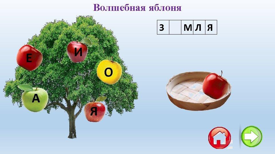 Волшебная яблоня З Е МЛ Я Е А И О Я
