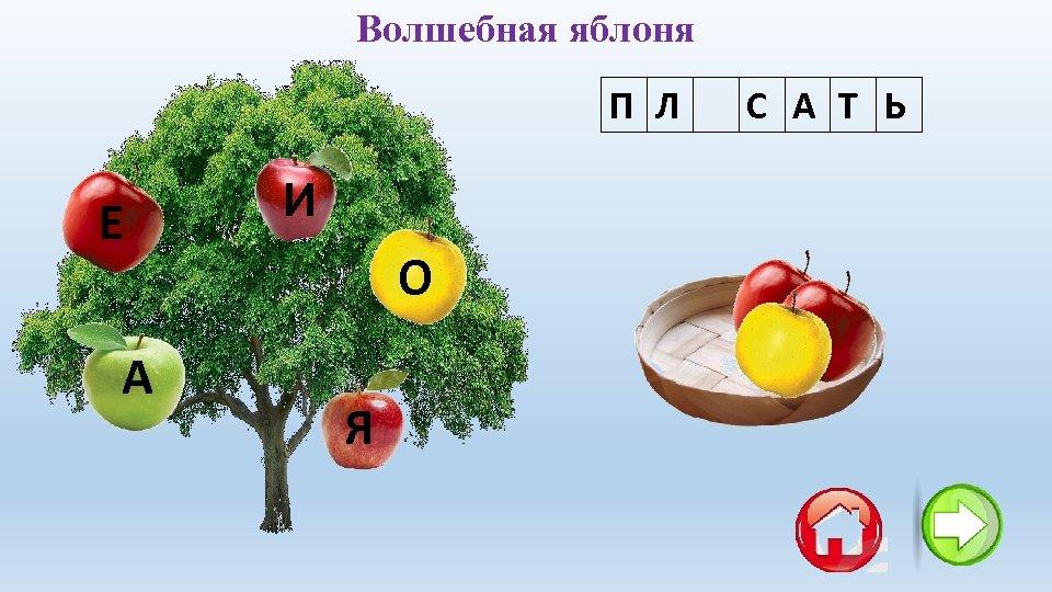 Волшебная яблоня П Л Я С А Т Ь Е А И О Я