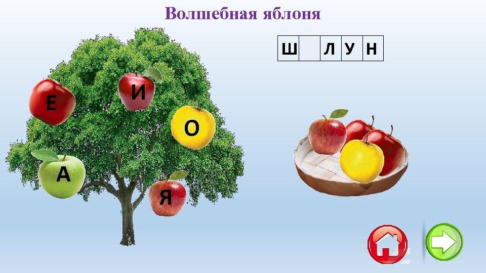 Волшебная яблоня ША Л У Н Е А И О Я