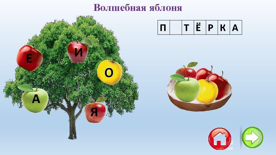 Волшебная яблоня П Я Т Ё Р К А Е А И О Я