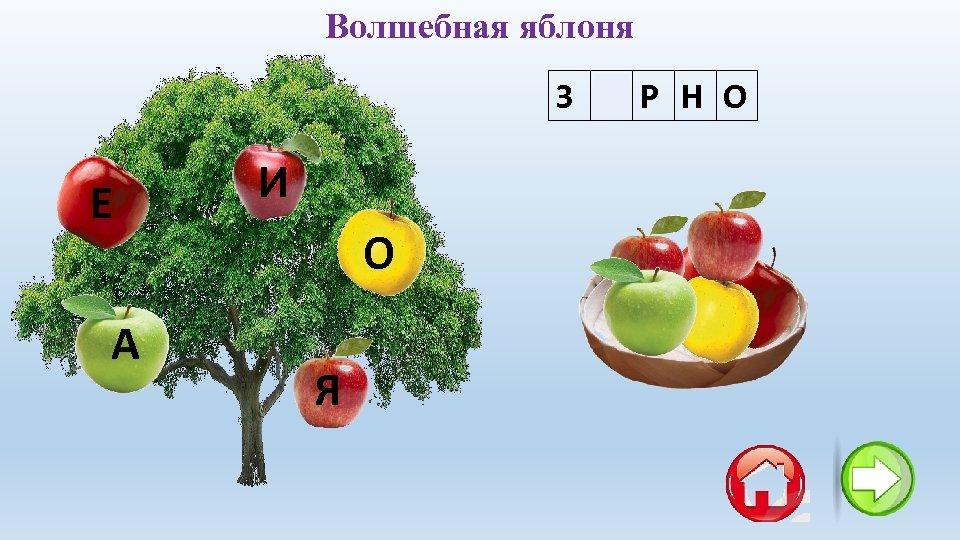 Волшебная яблоня З Е Р Н О Е А И О Я