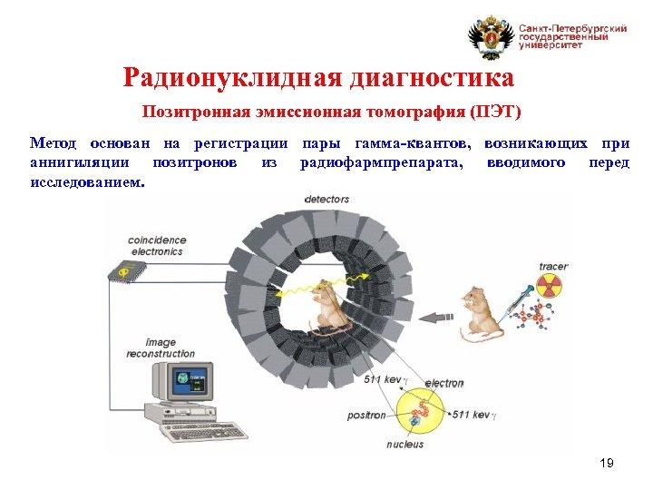 Радионуклидная диагностика Позитронная эмиссионная томография (ПЭТ) Метод основан на регистрации пары гамма-квантов, возникающих при