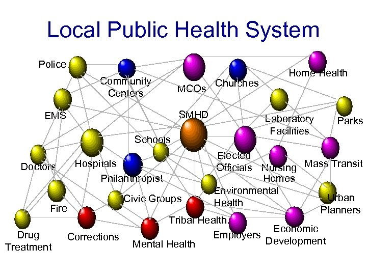 Local Public Health System Police Community Centers MCOs SMHD EMS Schools Churches Home Health